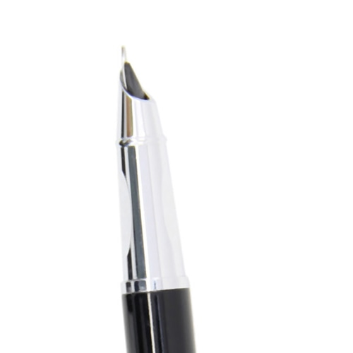 Swanky Look Fountain Pen