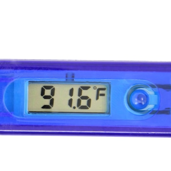 Digital Translucent Thermometer