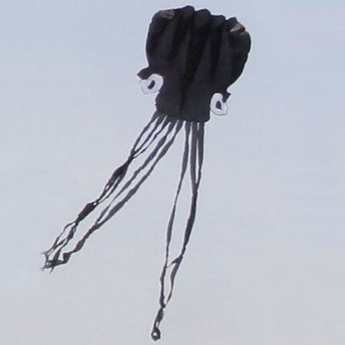 Octopus Soft Kite with Handle line Image 2