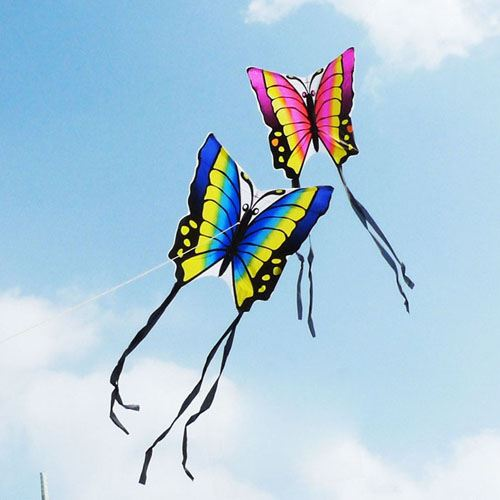Butterfly 2pcs/lot Kite with Hand Line