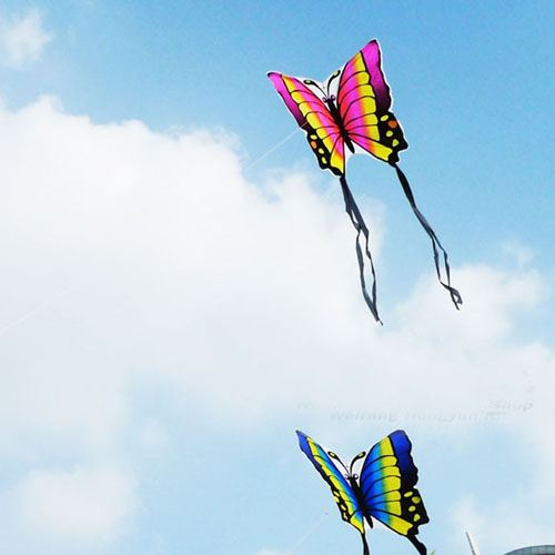 Butterfly 2pcs/lot Kite with Hand Line Image 1