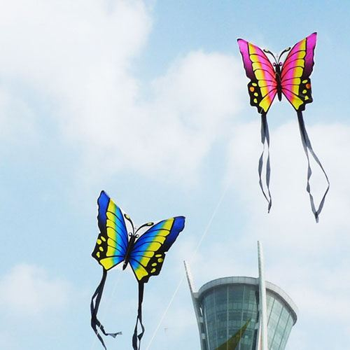 Butterfly 2pcs/lot Kite with Hand Line Image 2