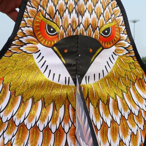 Golden Eagle Flying Kite with Handle Line Image 5
