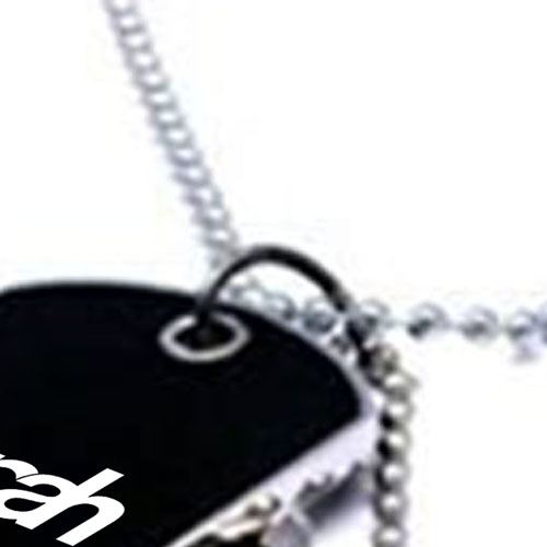 Black Army Style 2 Dog Tags Chain Pendant Image 2