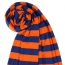 Striped Rugby Gryffindor Scarves Image 3