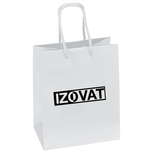 Promotional Customizable Paper Bags Image 1
