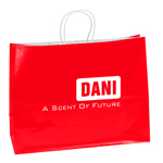 Promotional Custom Shopping Paper Bags
