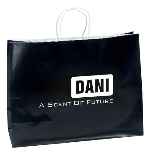 Promotional Custom Shopping Paper Bags Image 1