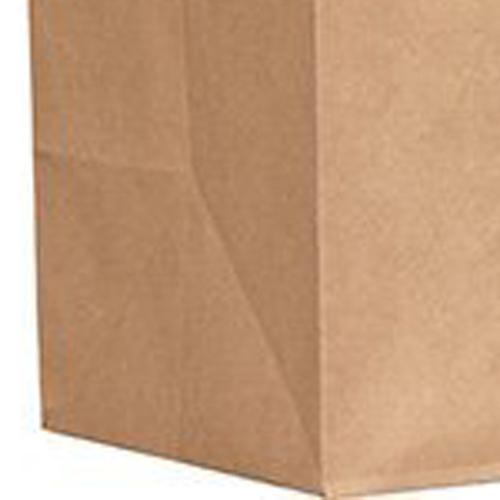 Kraft Paper Duro Handle Bag Image 2