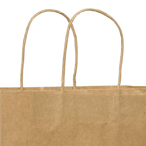 Kraft Paper Duro Shopping Bag Image 1