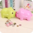 Plastic Beautiful Piggy Bank Image 2