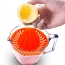 Press Squeezer Citrus Juicer