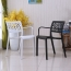 Webbed Plastic Dining Chairs with Armrest Image 2