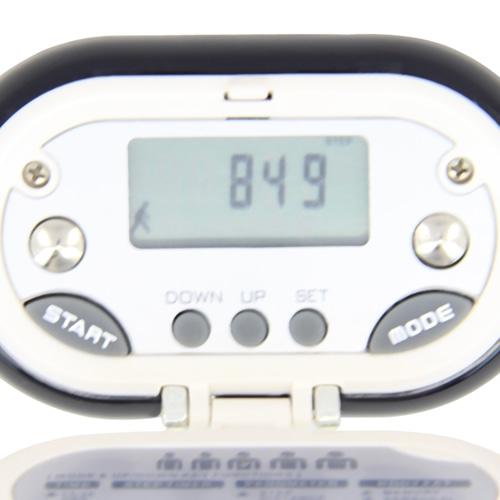 Pebble Shaped Pedometer