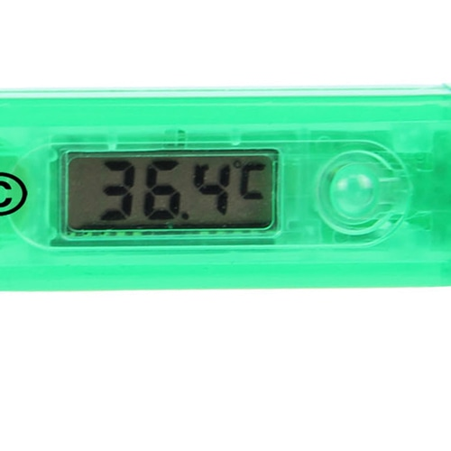 Translucent Digital Electronic Thermometer Image 6