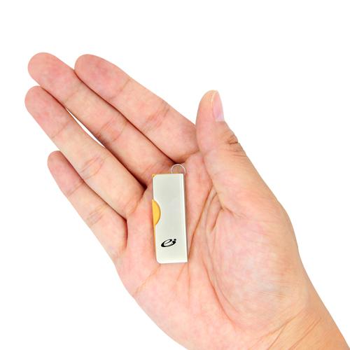 2GB Dap Swivel Flash Drive