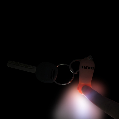 Pig Shaped 2 Led Sound Keychain