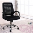 Bedlam Ergonomic Back Panel Chair Image 1