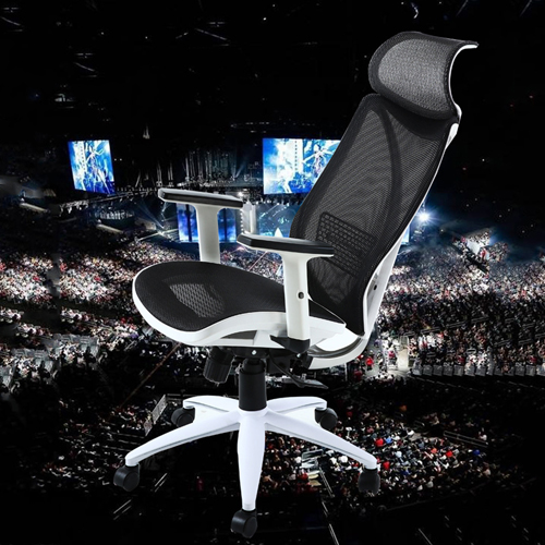 Ergonomic Lumbar Office Chair Image 1