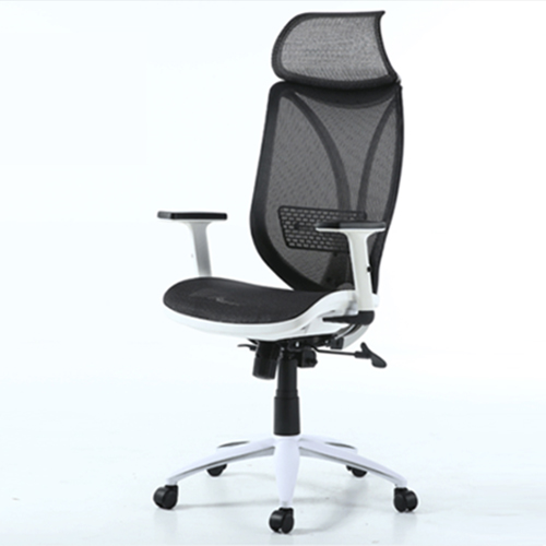 Ergonomic Lumbar Office Chair