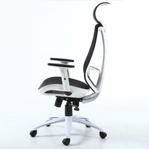 Ergonomic Lumbar Office Chair Image 2