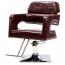 Retro Hairdressing Salon Chair