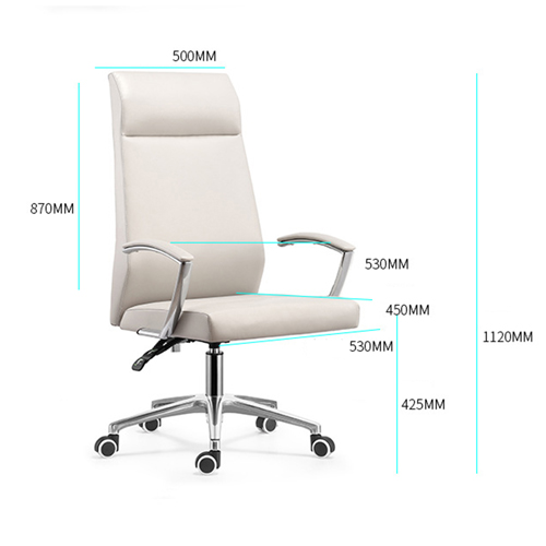 Cipri Leather Office Chair Image 13