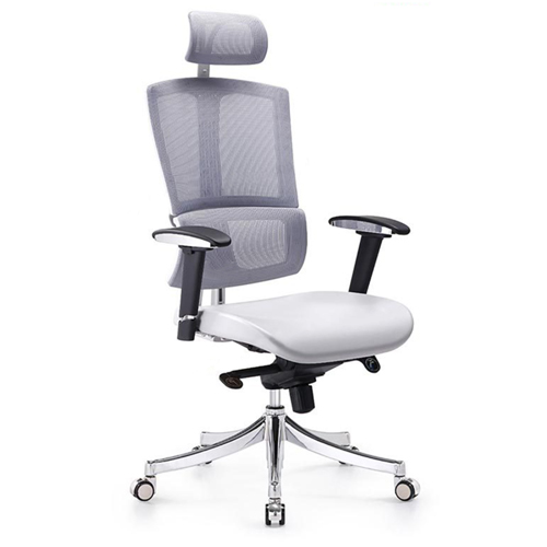 Executive Lumbar Task Chair