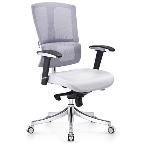 Executive Lumbar Task Chair Image 1