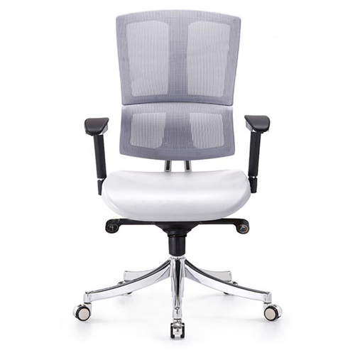 Executive Lumbar Task Chair Image 2