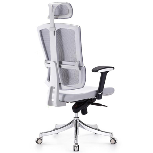 Executive Lumbar Task Chair Image 5