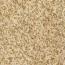 Golden Hemp Granite Tile