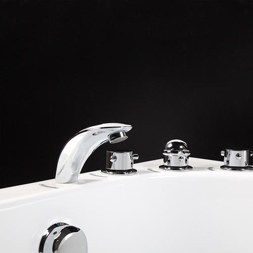 Round Ergonomic Bathtub