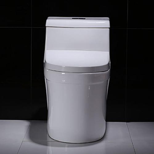 Elongated Dual Flush One-Piece Toilet