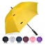 Double Canopy Windproof Umbrella