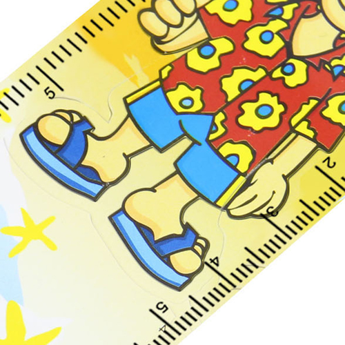 15cm Customize Shape Plastic Ruler