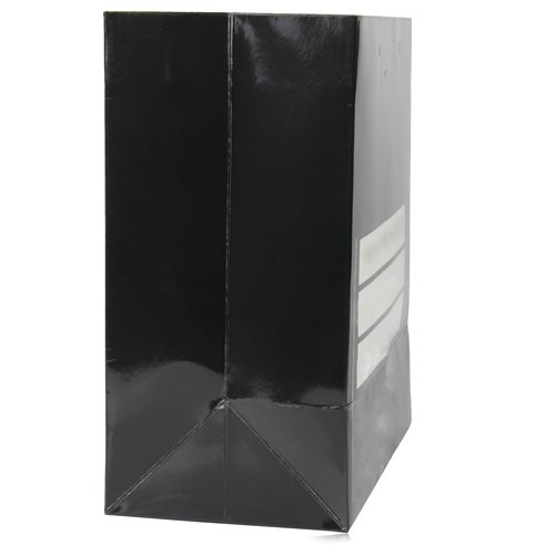 Larg Paper Bag