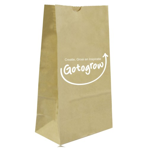 Stand Up Paper Merchandise Bag Image 12