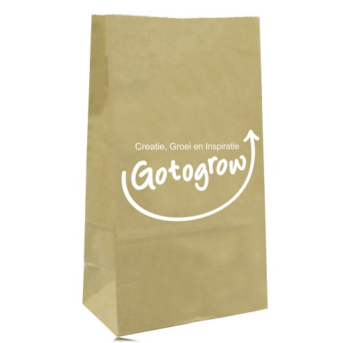Stand Up Paper Merchandise Bag