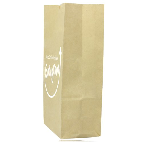 Stand Up Paper Merchandise Bag Image 2