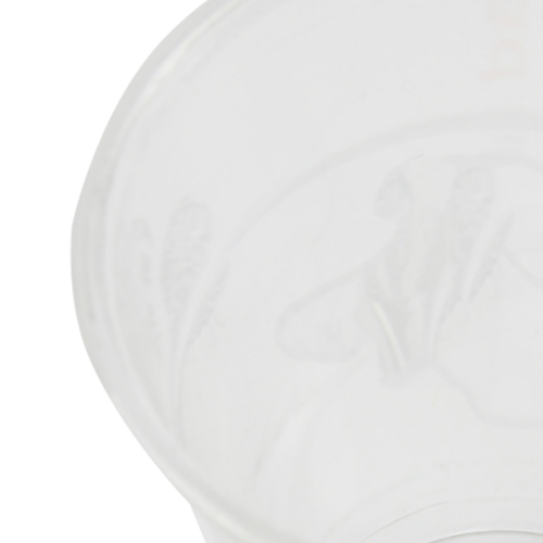 17 Oz Disposable Plastic Cup