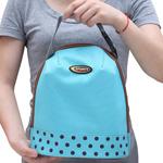 RanTic Lunch Cooler Bag