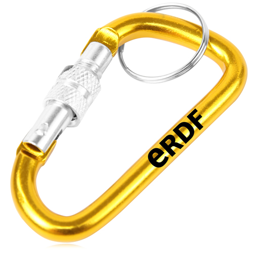 Screw Lock D Hung Carabiner Keyring