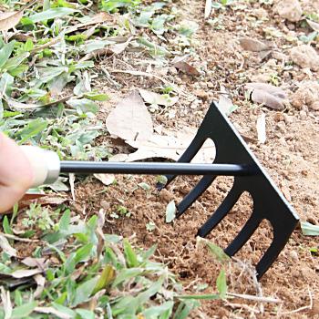 5 Tine Garden Hand Rake