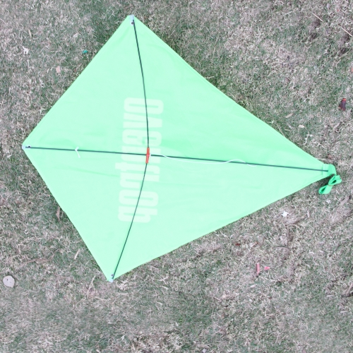 Diamond Kite Image 10