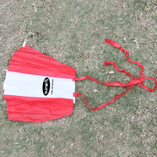 Two Tone Color Flying Kite