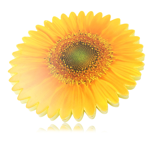 Sunflower Shaped Kneeling Mat