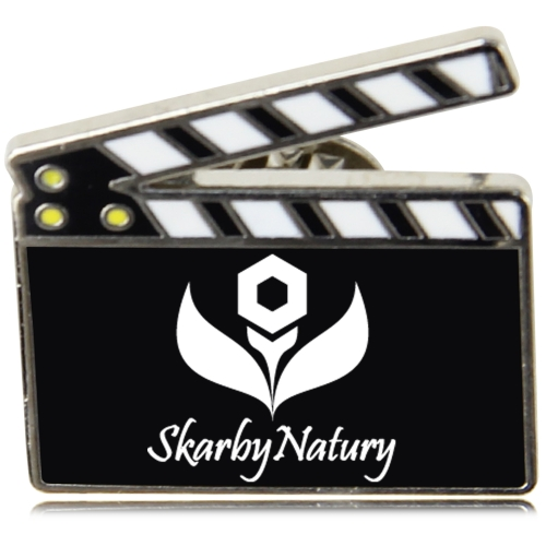 Logo Shaped Lapel Pin Image 2