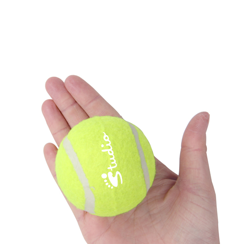 Rubber Bladder Tennis Ball