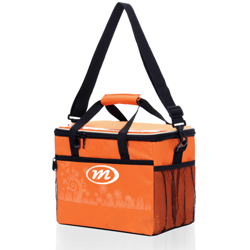 Insulated Picnic Lunch Bag